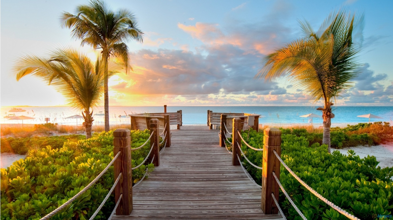 Caribbean-Wood-Beach