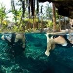 nohoch-snorkeling