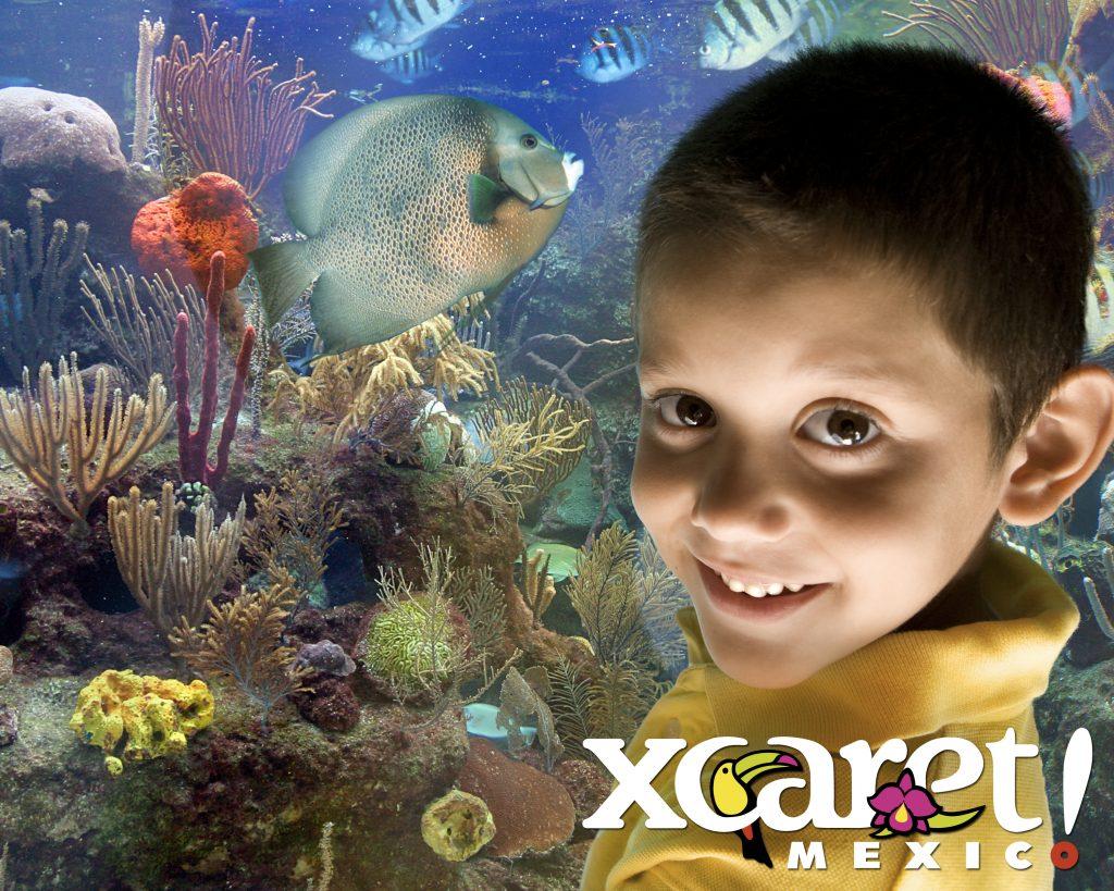O Parque Xcaret tem o maior aquário de recife de corais da América Latina.