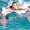 dolphin-royal-swin