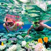riviera-maya-snorkeling-slider-2